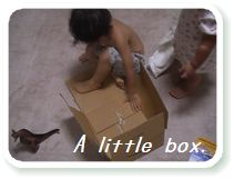 a little box2.jpg