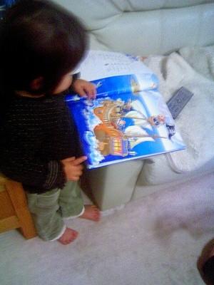 2歳児 絵辞典 ロングマン